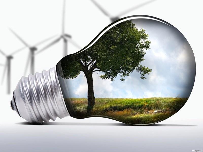 Купить Энергетика цена