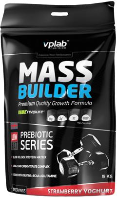 Цена Mass Builder 5 кг